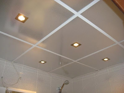 latest bathroom ceiling designs catalogue 2019