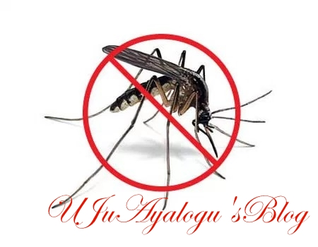 Stop killing mosquitoes, they're our friends — Prof Adeolu Ande