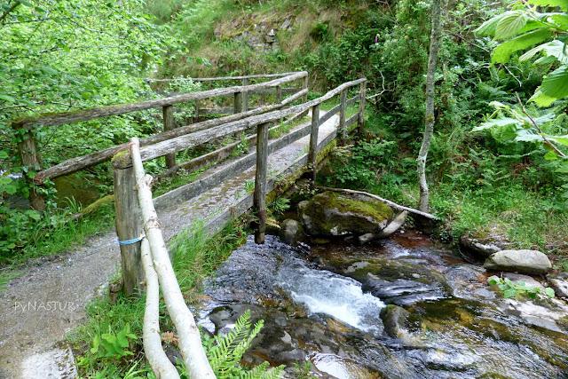 Puente Degoes sobre el Río Infierno - Parque Natural de Redes