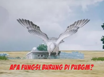 Mau Tahu Fungsi Burung di PUBG Mobile? Yuk Cari tahu Disini