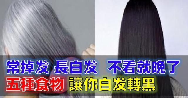 http://www.sharetify.com/2016/05/5_16.html