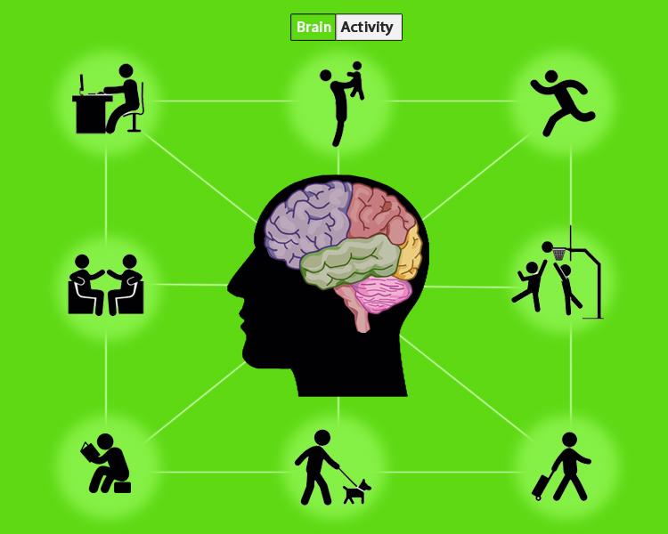melakukan aktifitas berfariasi atau brain activity