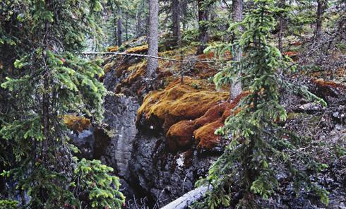 Maligne Canyon Jasper National Park Alberta