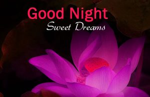 Download Good night Images with Flowers