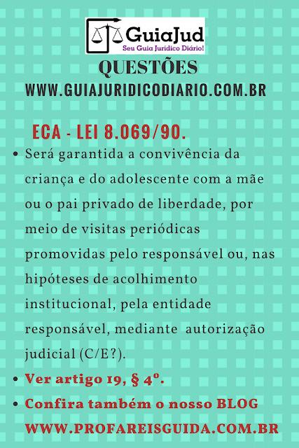 DICA  - ARTIGO 19, § 4º DA LEI 8.069/90 - ECA