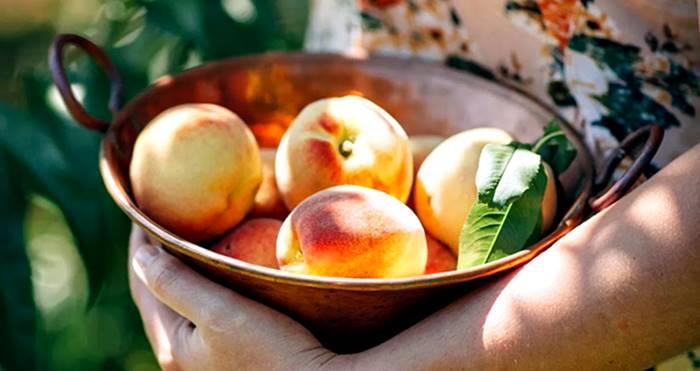 Los duraznos son frutas ricas en estrógenos