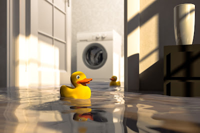 4 Signs of Water Damage in Your Basement GreenPro Cleaning