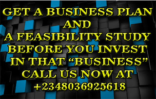 Human Resource Planning in Business Plans and Feasibility Study