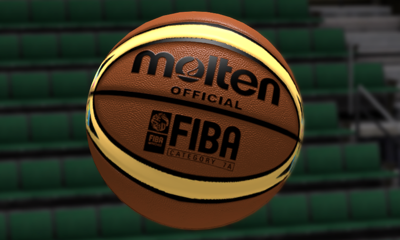 Official FIBA 2014 Molten Ball