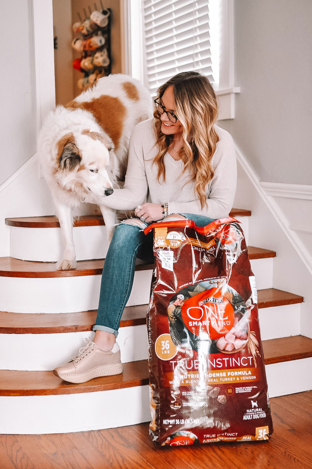 Blogger Amanda Martin's dog takes the Purina 28 Day Challenge