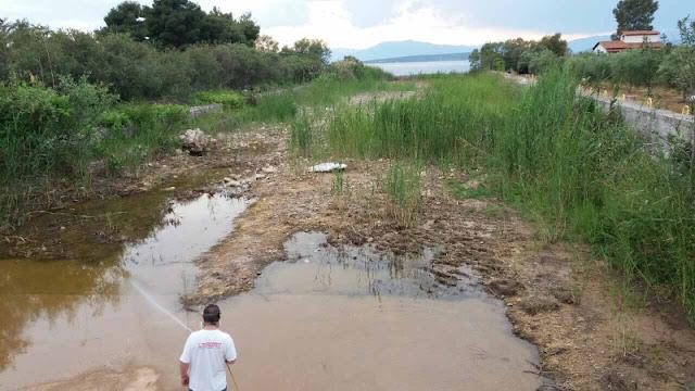 Συνεχής η καταπολέμηση των κουνουπιών στο Δήμο Ναυπλιέων