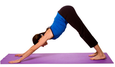 Adho Mukha Svanasana | Health and Fitness Bible