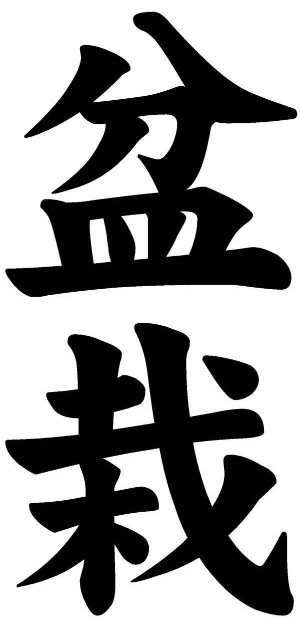 El rincn del Aikido BONSAI