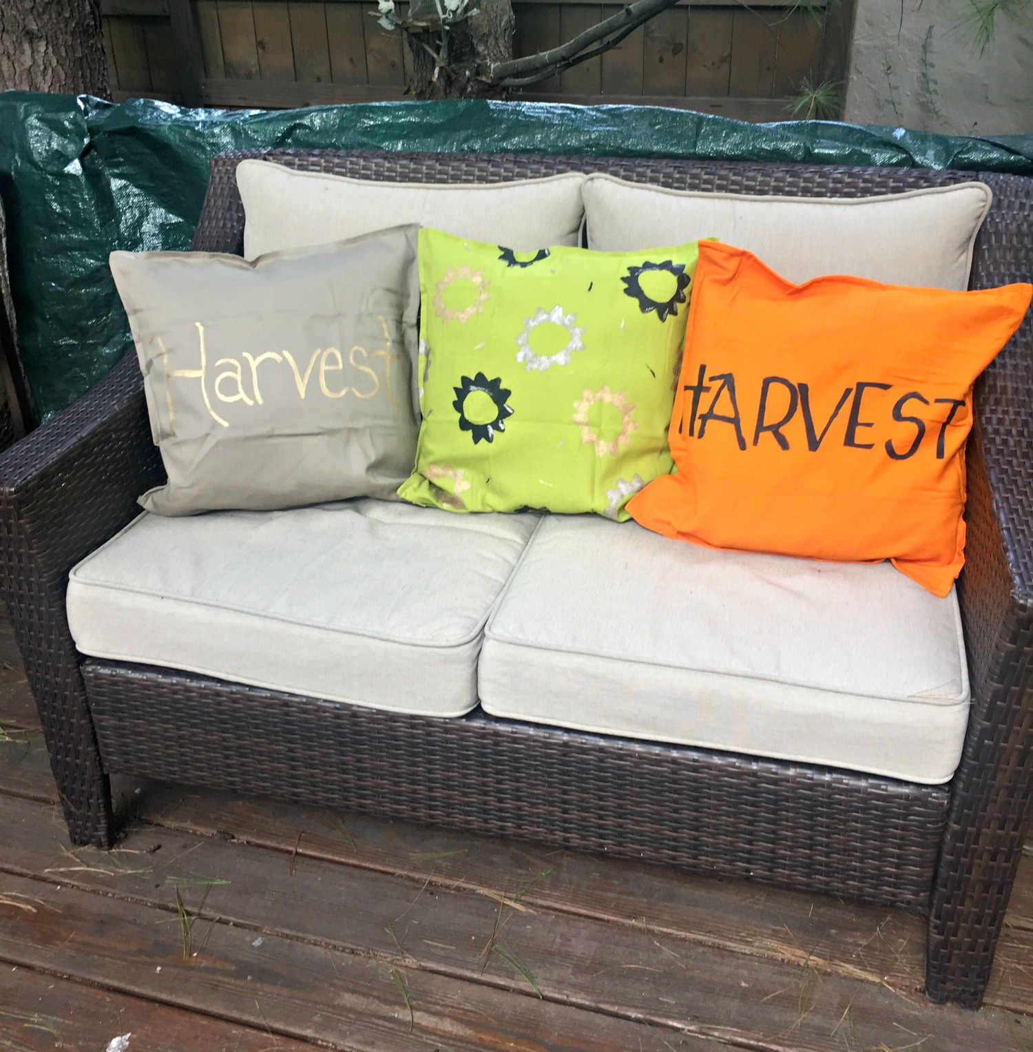 Diy Stenciled Fall Pillows The Food Hussy