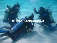 peserta selam karimunjawa