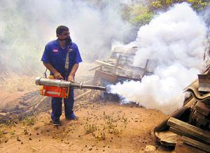 nuevo dengue