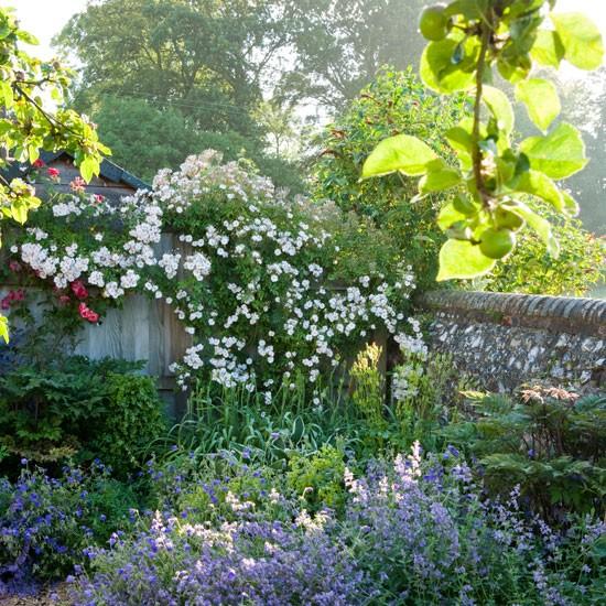 jardin en wiltshire c sas de pel cula. Black Bedroom Furniture Sets. Home Design Ideas