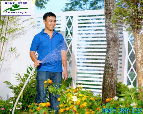 Chăm sóc cây cảnh tại nhà