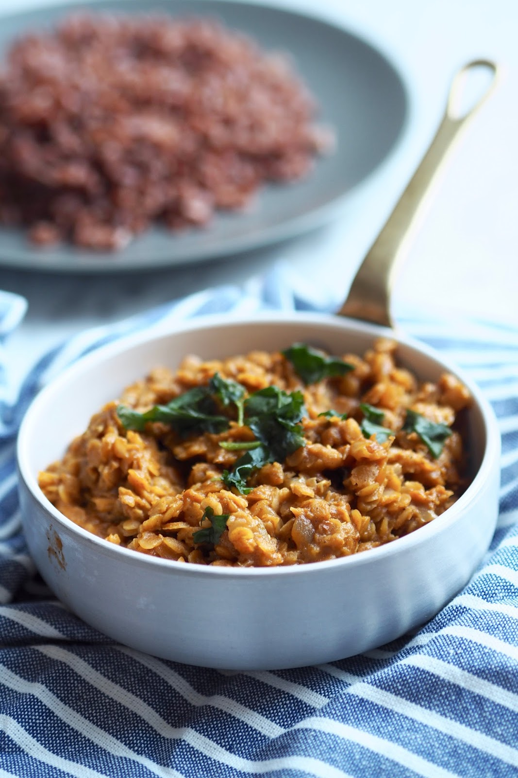 RED LENTIL CURRY 3