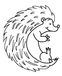 Hedgehog coloring page 3