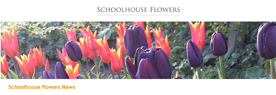 Schoolhouse Flowers