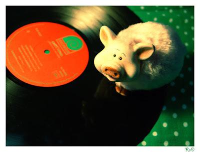 Cerdo con disco mezcla explosiva