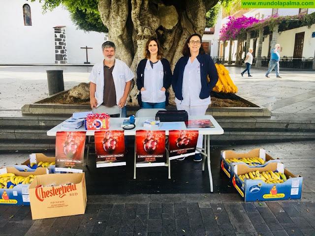 El Área de Salud de La Palma celebra el Día Mundial Contra el Tabaco con mesas informativas