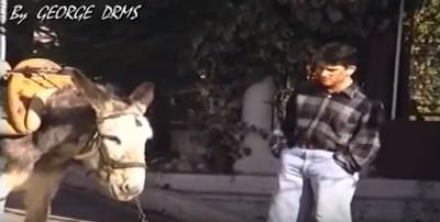 Γάιδαρος που μιλάει τρελό γέλιο!! video