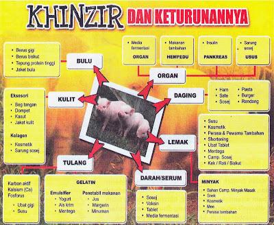 Hasil carian imej untuk Daging Babi Kerana Tak Tahu, Hukumnya?