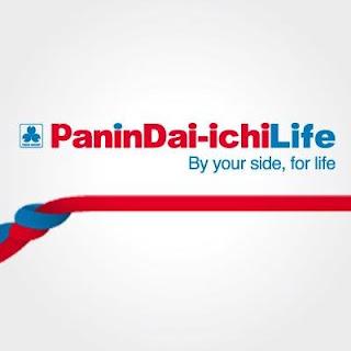 panin insurance