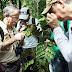 Encontrada nova espécie de planta na Amazônia