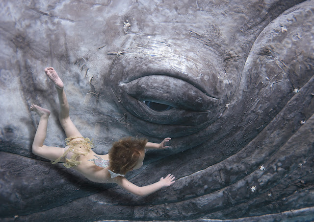 Green Pear Diaries, fotografía, Zena Holloway, fotografía submarina, underwater photography