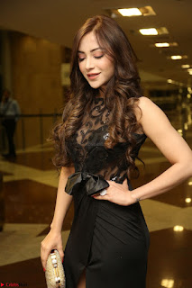 Angela Krislinzki in Transparent Black Gown at Rogue Movie Teaser Launch 1st March 2017 112.JPG