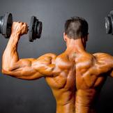 Cara Melatih Otot Back Shape Dengan Alat GYM
