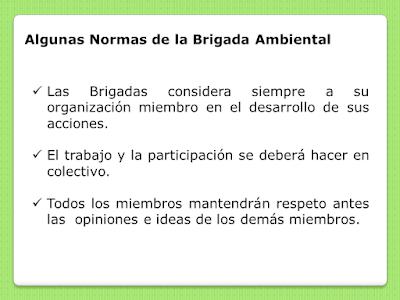 algunas normas de las brigadas ambientalistas