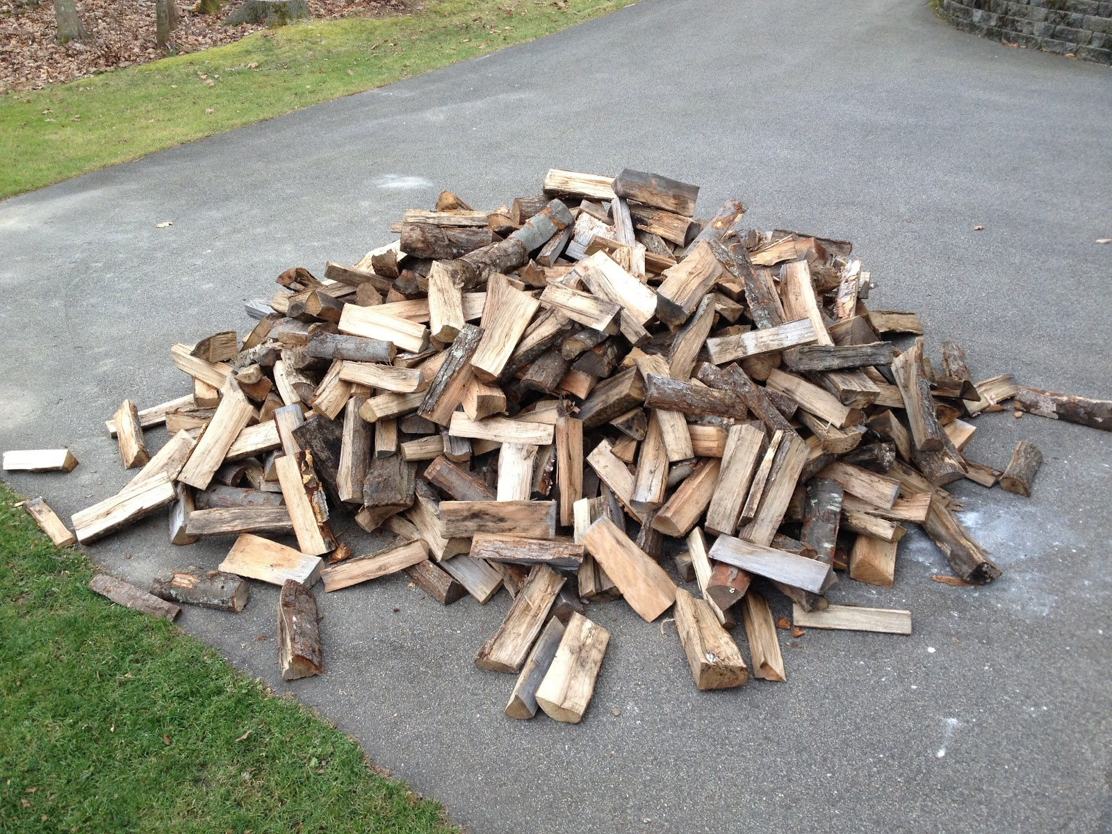 Spicebush log wood stove phase ii firewood