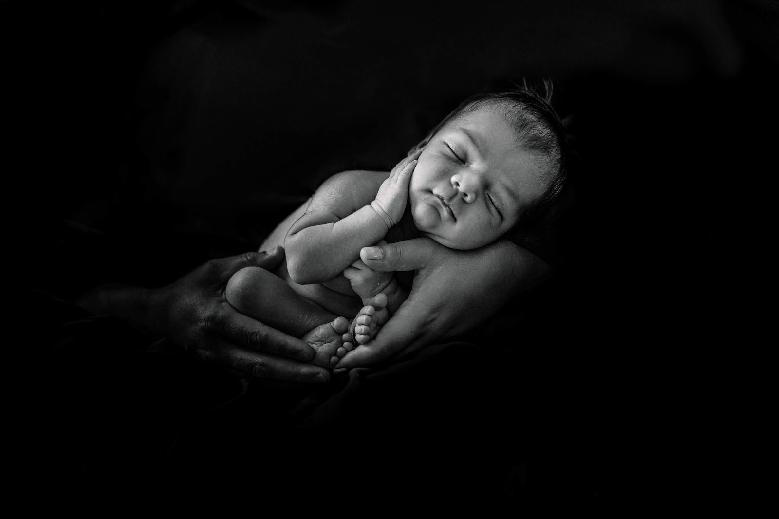 studio newborn photography in fremont ca family of 3