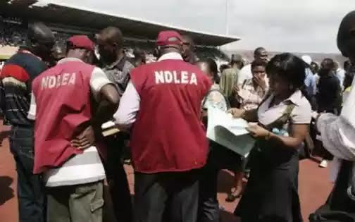 NDLEA Arrests Cocaine Peddlers In IDPs Camp