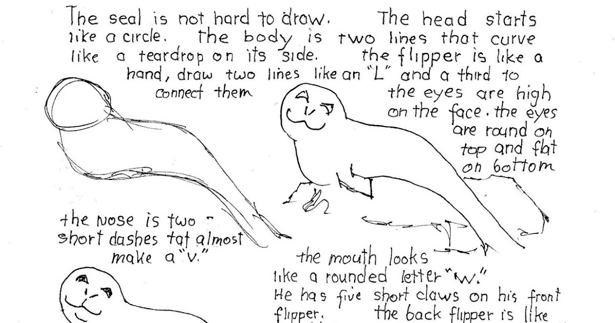 harbor seal coloring pages - photo#18