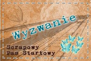 http://scrapowypasstartowy.blogspot.com/2014/02/byc-kobieta.html