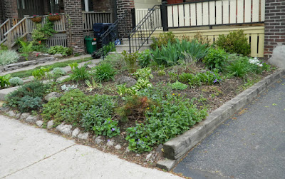 Monarch Park  spring garden cleanup after by Paul Jung Gardening Services Toronto