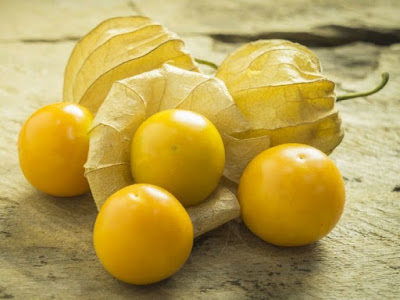 Health Benefits Of Golden Berries You Need To Know