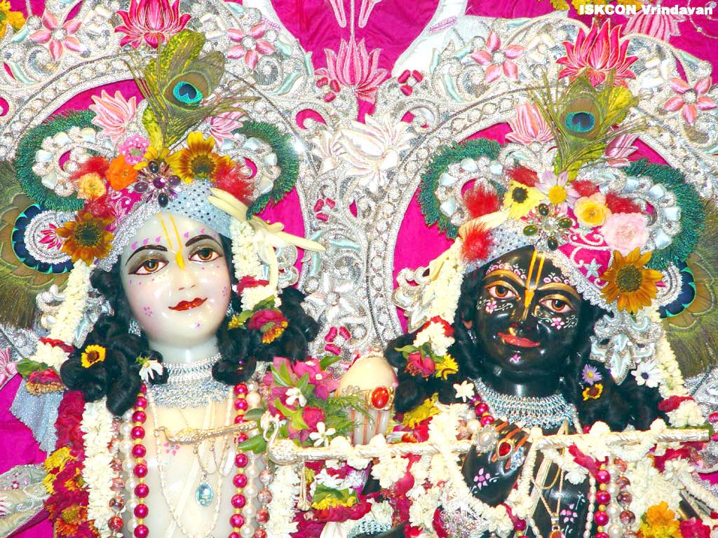 Web Design Company In Udaipur: Shri Krishna Live Wallpaper