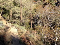 Heading north on Fish Canyon Trail near, Angeles National Forest