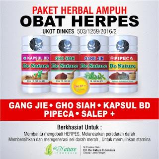 Pengobatan Yang Cocok Untuk Herpes