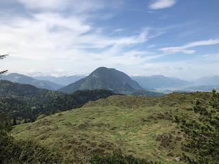 Panorama Blick von der Walleralm