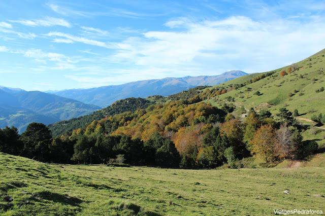 Serra Cavallera, Ripollès, Girona, Catalunya, Pirineus Catalans