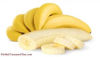 diet pisang dipagi hari, diet pisang, teori diet pisang, aturan diet pisang, manfaat dan khasiat diet pisang, kerugian diet pisang, efektivitas diet pisang