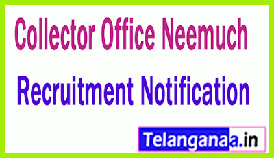 Collector Office Neemuch Recruitment Notification