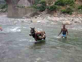 एक प्रेणादायक कहानी - गधे की समझ | Motivational Story In Hindi | Gyansagar ( ज्ञानसागर )